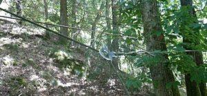 tendre la corde entre deux arbres avec une boucle